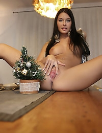 Christmas party - FREE PHOTO AND VIDEO PREVIEW - WATCH4BEAUTY erotic art magazine photo #8
