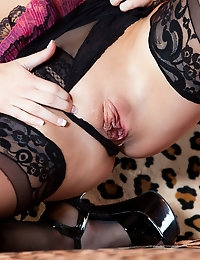 Penthouse.com Photo Gallery - Natasha Nice - Penthouse Petsand and the World's Sexist Women Since 1973  photo #7